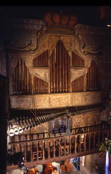 organ8.jpg